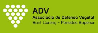 ADV Sant Llorenç – Penedès Superior